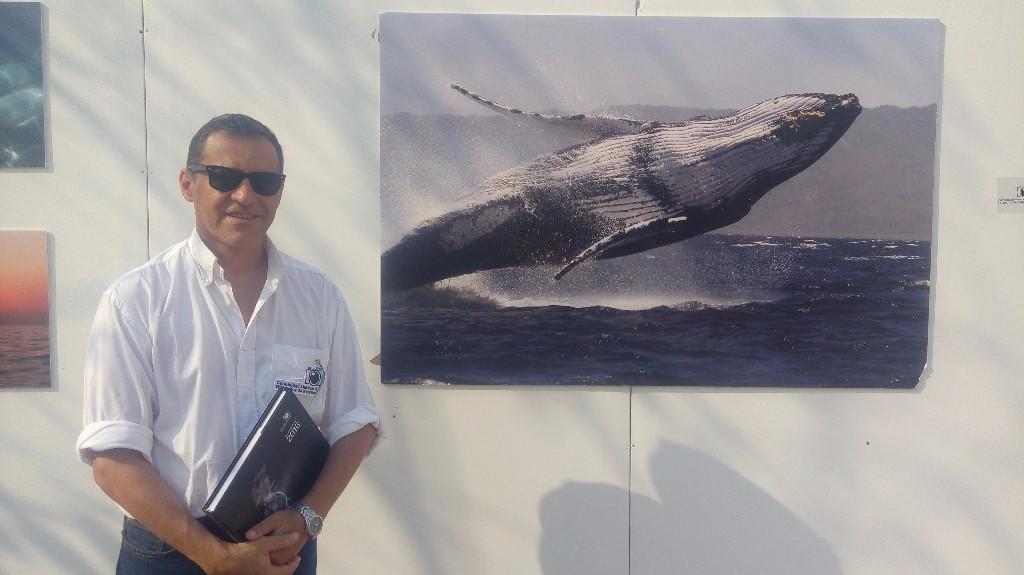 -El Fideicomiso de Turismo Puerto Vallarta invita a una muestra fotográfica; hoteleros reforzaron su habitual limpieza del litoral